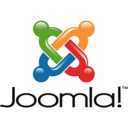 Joomla Customized Form Page