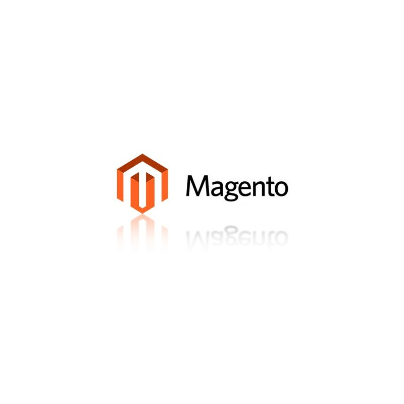 magento how to create multiple websites